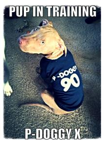 P doggy 90